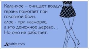 atkritka_15